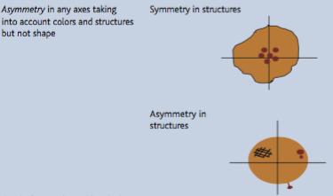 asimetria-estructure-dibuix