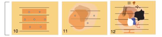 Disposición del pigmento en MLA